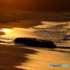 角島海岸の夕景 #4