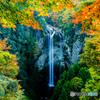 福貴野の滝(秋)#2
