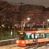 平成最後の飛鳥山夜桜