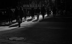 一条の光~導かれる影