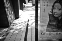 横浜という街