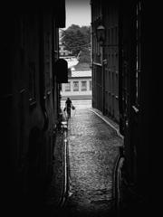 雨上がりの裏路地