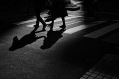 silhouette #88