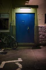 a fascinating door #7