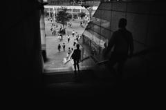 silhouette #49