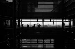 silhouette #42