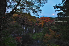 富士を飾る。