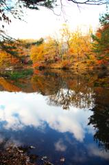 空色、秋色。