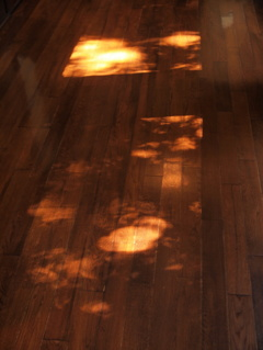 秋の燈 2