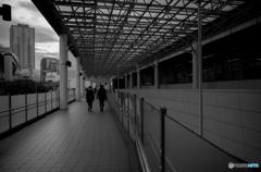 Yokohama Snap #15