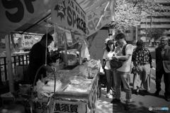 大岡川桜探訪 #10
