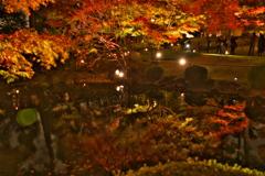 秋dream