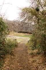 抜けると田園風景