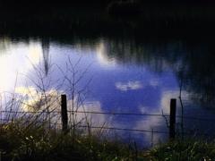 池に写った青空