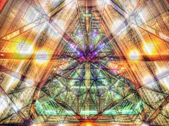 光の紋章  -  荊の園