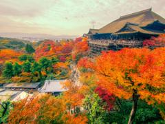 曇天の清水寺