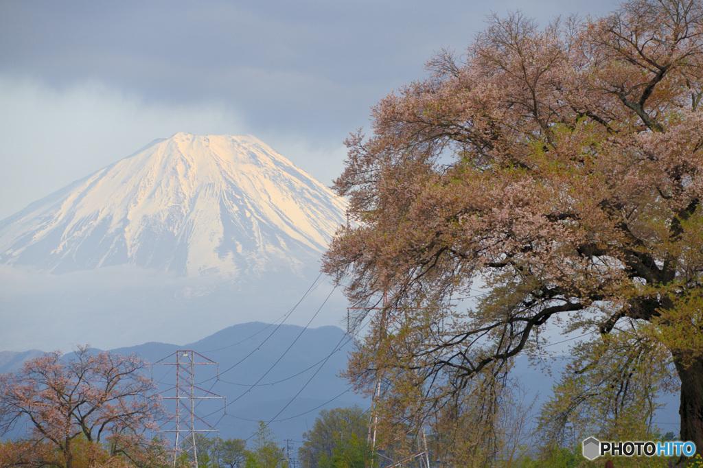 富士に逢いたくて 426