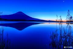 富士に逢いたくて 301