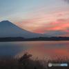 富士に逢いたくて 407