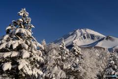 富士に逢いたくて 318