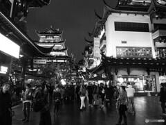 monochrome上海 72