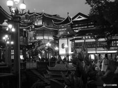 monochrome上海 71