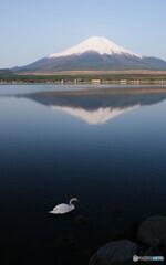 霊峰、富士山と