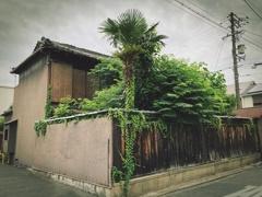 緑地化 (2)