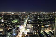 東京山脈と富士山 高さ115Mからの夕景#9