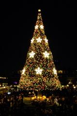 メリークリスマスでした^^; #1