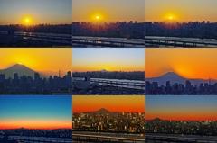 タワーホール船堀で見た富士山夕景