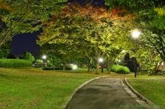 夜の公園で・・・#3