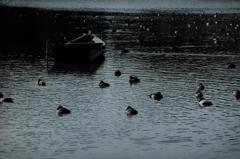 緩やかにゆらぐ湖面