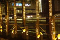 戸塚のクリスマス光