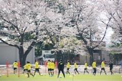 花より男子なサッカー日和