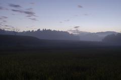 千葉の田園風景