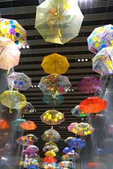 渋谷の街にも傘の花