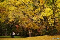 ふたりに降る秋