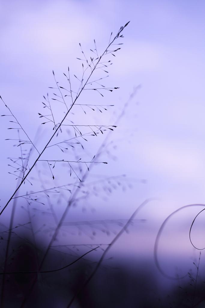 きりきりの風。