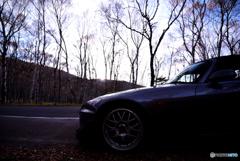 ビーナスの森と愛車