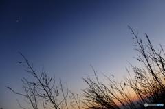 夕日と夕焼けと夕月