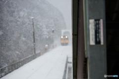 雪のスーパーいなば Ⅱ