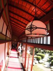 葛飾山本亭 5-2「渡り廊下」