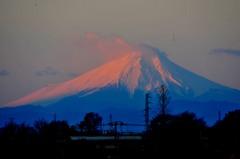 新年明けましておめでとうございます。「富士初春」