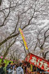桜の樹の下で(埼玉県幸手市権現堂公園)(24)「あげもち人気」