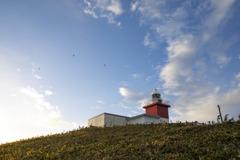 花咲灯台は風が強かった。