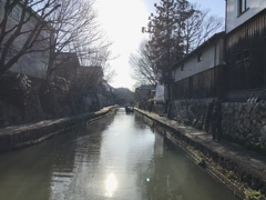 近江八幡 水郷めぐり
