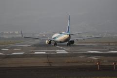 全日空伊丹空港で離陸の瞬間1