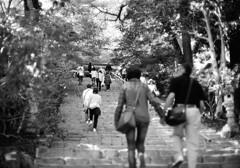 室生寺の初夏