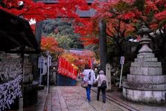 奈良の紅葉②